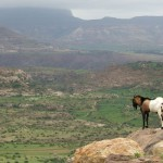 Ethiopia – Ride Rough Guides