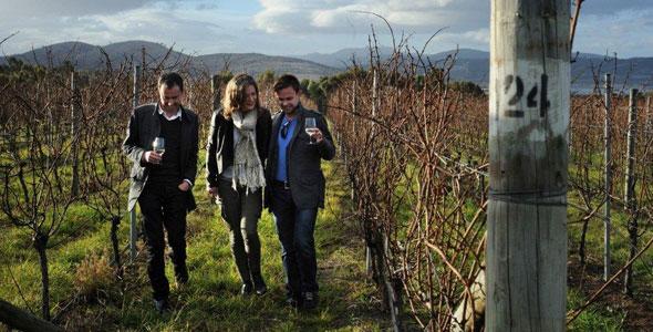Wine Tasmania