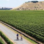 Spring Cycle Rides in New Zealand