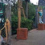 Halloween at Busch Gardens Tampa
