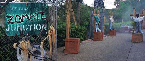 Halloween At Busch Gardens Tampa Global Travels Usa