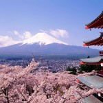 5 Reasons To Visit Tokyo