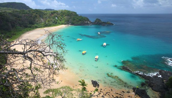 Baia do Sancho chosen as best beach