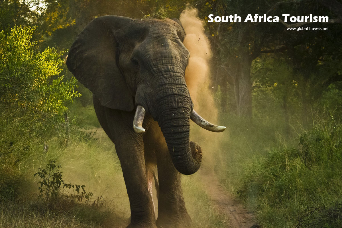 R100m to grow SA tourism industry